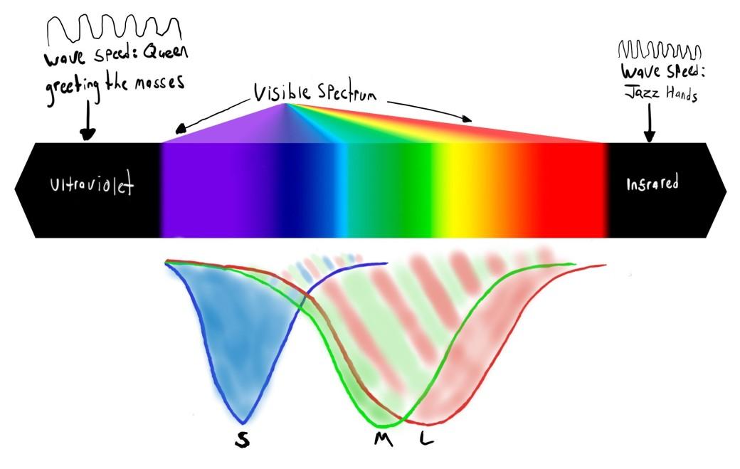 blog-spectrum